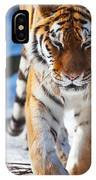 Tiger Strut IPhone Case