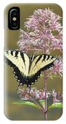 Tiger Swallowtail Butterfly On Common Milkweed 1 IPhone Case