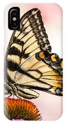 Tiger Swallowtail On Coneflower IPhone Case
