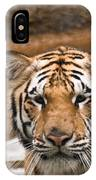 Tiger Wading Stream IPhone Case