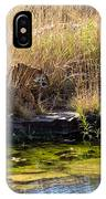 Tigress By The Stream IPhone Case
