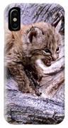 Tiny Bobcat Kitten IPhone Case