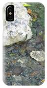 Tiny Fish In The Clear Water IPhone Case