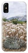 Tiny Mountain Blooms IPhone Case by Margaret Pitcher
