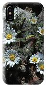 Tiny White Flowers In The Gravel IPhone Case