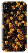 Tiny Yellow Flowrers On The Desert Floor IPhone Case