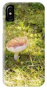Toadstool Grows On A Forest Floor. IPhone Case