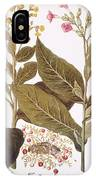 Tobacco Rustica, 1613 IPhone Case
