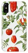 Tomatoes And Related Vegetables IPhone Case