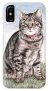 Tomcat Max IPhone Case