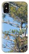Top Of The Pine IPhone Case