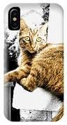 Topaz Series 1 IPhone Case