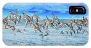Topsail Skimmers IPhone Case
