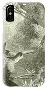 Toucans And Monkeys IPhone Case