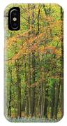 Touch Of Autumn IPhone Case