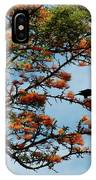 Touch Of Orange IPhone Case
