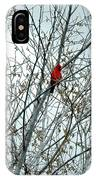 Touch Of Red IPhone Case