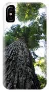 Towering California Redwood Trees IPhone Case