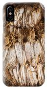 Traditional Sun Dried Squid In Kep Market Cambodia IPhone Case