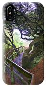 Trail To Copalis Beach IPhone Case
