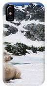 Traildog In Snow At Missouri Lakes IPhone Case