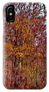 Transitions - Painterly IPhone Case