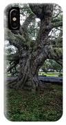 Treaty Oak 12 14 2015 028 IPhone Case