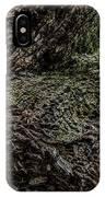 Treaty Oak 12 14 2015 042 IPhone Case