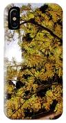 Tree Along Zion Riverside Walk IPhone Case