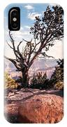 Tree At Moran Point IPhone Case