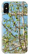 Tree At The Coba Ruins  IPhone Case