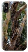 Tree Branch Texture 1 IPhone Case