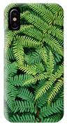 Tree Fern Fronds IPhone Case