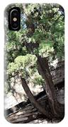 Tree Growing Through Wall IPhone Case