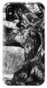 Tree I IPhone Case
