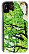 Tree In A Medieval Frame IPhone Case