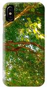 Tree In Late Summer IPhone Case
