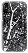 Tree In Summer In Black And White IPhone Case
