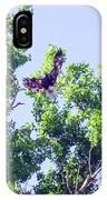Tree Landing IPhone Case