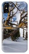 Tree Life In Winter IPhone Case