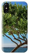 Tree On The Bay IPhone Case