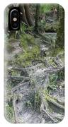 Tree Roots And Lithia Springs IPhone Case