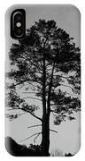 Tree Silhouette In The Dark IPhone Case