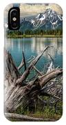 Tree Stump On The Northern Shore Of Jackson Lake At Grand Teton National Park IPhone Case