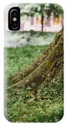 Tree Trunks In Spring IPhone Case