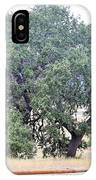 Trees 006 IPhone Case