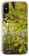 Trees 9684 IPhone Case