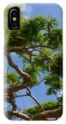Trees In Bermuda IPhone Case