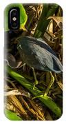 Tri-color Heron 5 IPhone Case