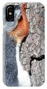 Tricolored Squirrel IPhone Case